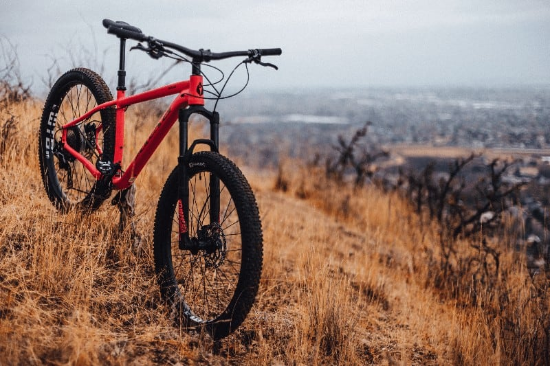 Black And Red Hardtail Mountain Bike On Brown Grass